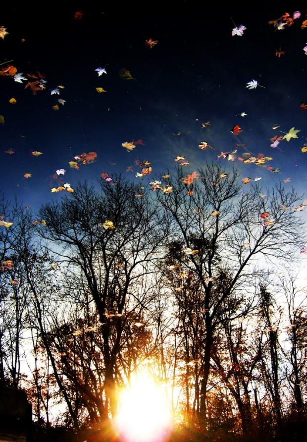 autumn_reflection1