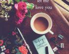 q_letme_loveyou2